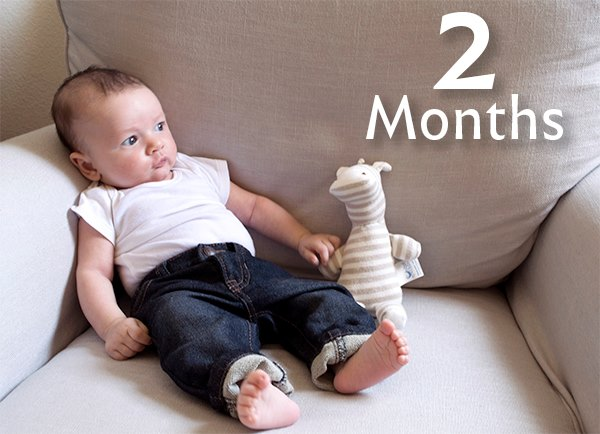 he is 2 months